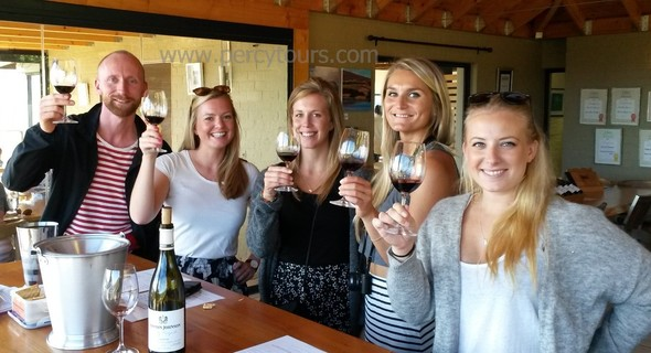Wine Tours of Hermanus wine region, Hemel-en-Aarde wine valley, South Africa