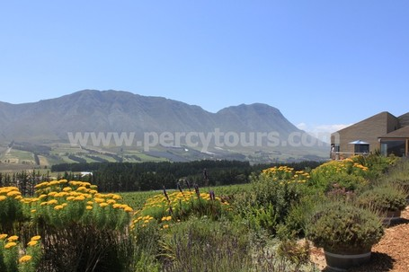Winery and Wine Cellars, Hemel-en-Aarde wine valley, Hermanus
