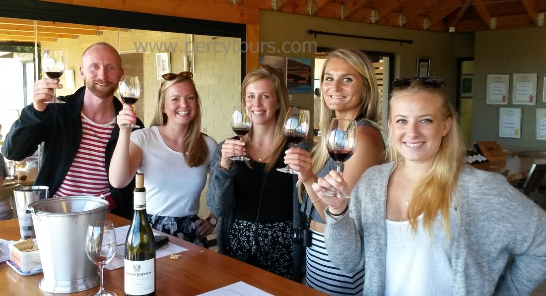 Happy tourists on a Wine Tour of Hermanus, with over 100 awarding wines to sample