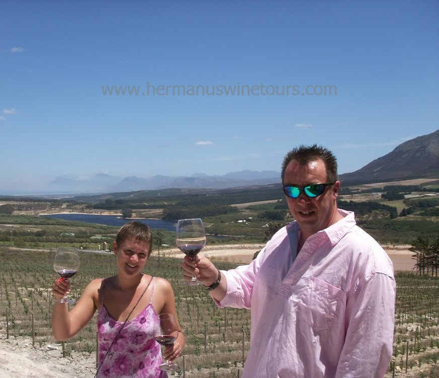 Wineries in Hermanus, Stanford, Botrivers, Elgin winelands, Cape Town, South Africa