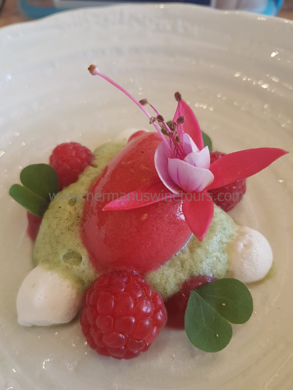 Raspberry and mint sorbet, Hermanus restaurant, South Africa
