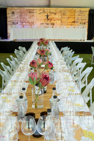 Tasting Table at Pinot Noir Celebration, Hermanus, Hemel en Aarde, near Cape Town, South Africa